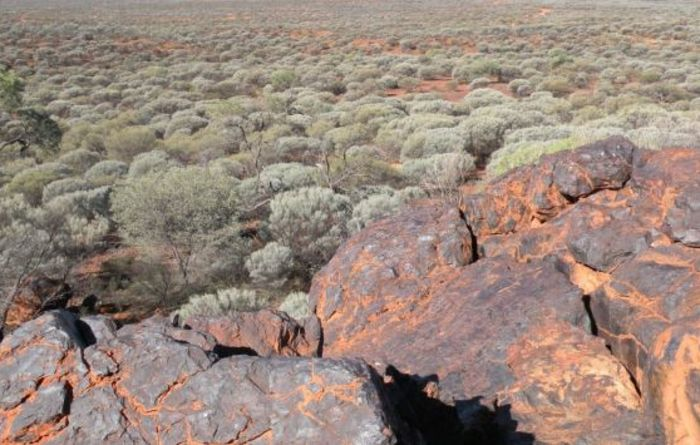 Gold Valley good to go at Wiluna West
