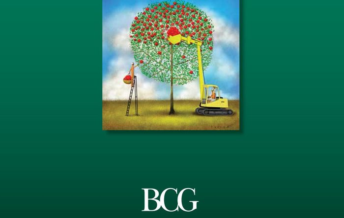 Cost-cutting alone not the answer, says BCG