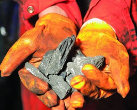 Mammoth analysis reveals high yield coking coal