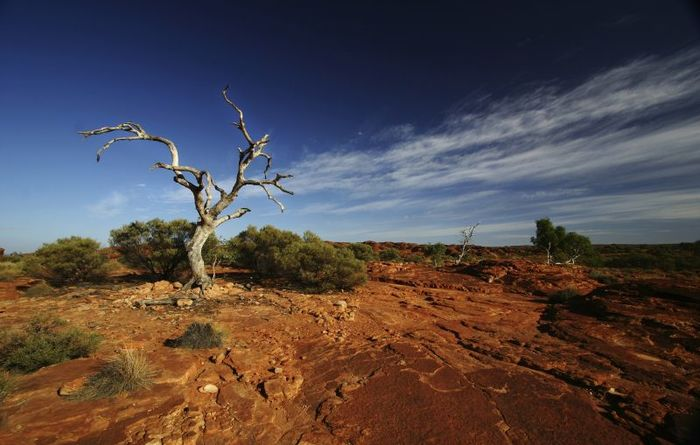 Pilbara considers the way ahead