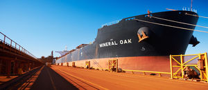 BHP's big bet on clean shipping fuel