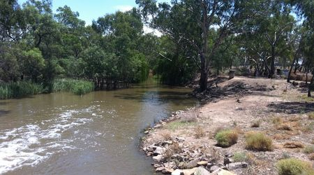 Tritton on water watch as drought starts to bite