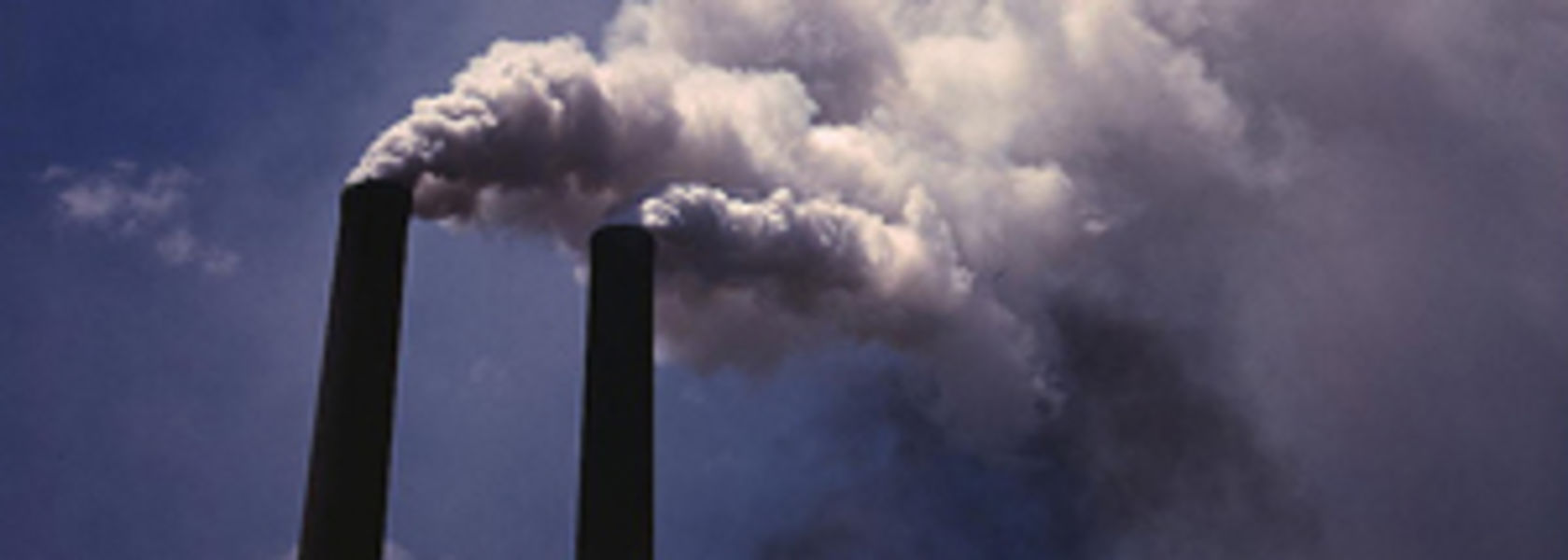 Carbon pricing not a high risk for ASX200: CDP