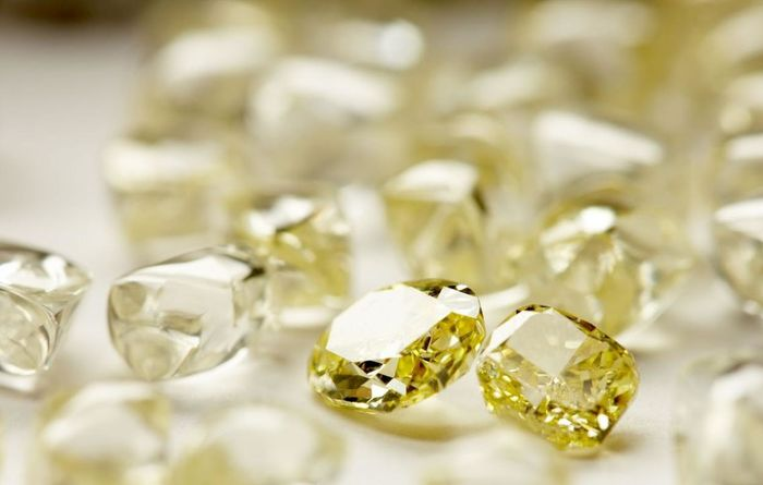 Kimberley Diamonds chief arrested, charged