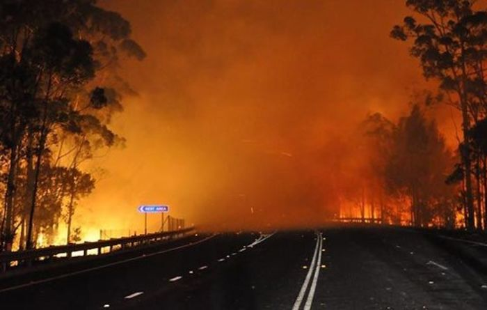 Yancoal takes on the COVID-19 and bushfire challenges