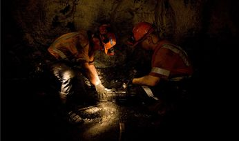 Wollongong Coal production plunges