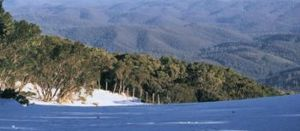 Water worries over Latrobe lakes plan