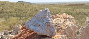 Pilbara Minerals takes downstream step