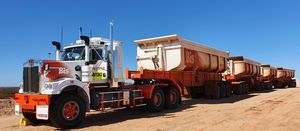 Bis to haul Roy Hill ore