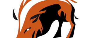 Hogsback on the anti-Adani movement