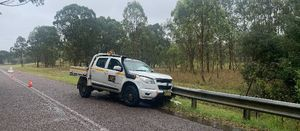 Kangaroo may have caused light vehicle collision