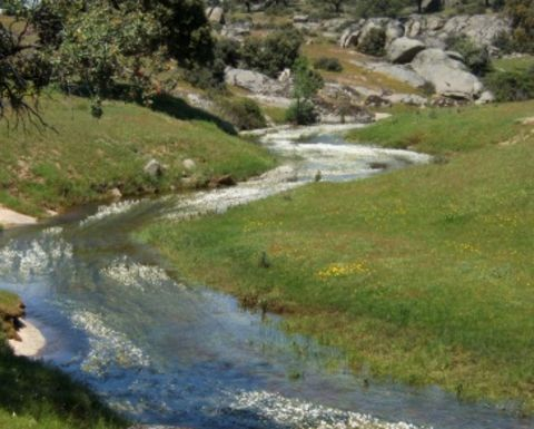 Stream buffer zones under debate at House Committee hearing