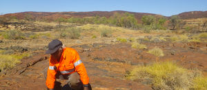 Lithium works for Pilbara JV