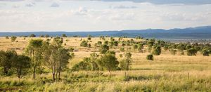 Moreton gives up on Kingaroy coal project