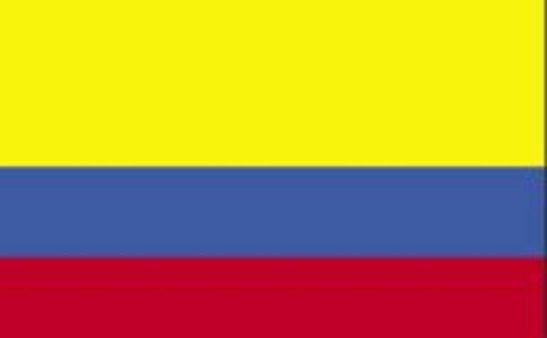 New Colombia Resources discovers new metallurgical coal seam