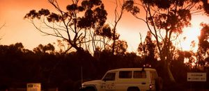 Bushfire disrupts Forrestania activities