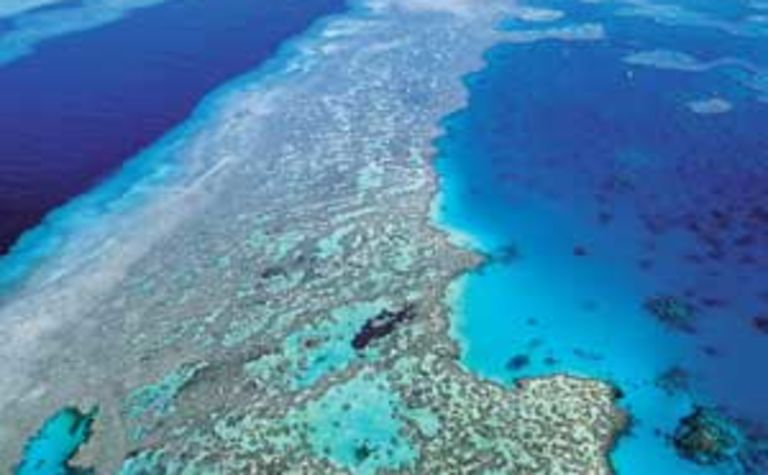 Greens seek to stop dumping in Reef